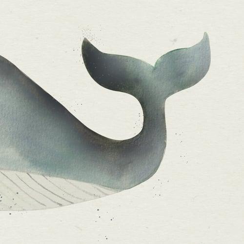 Image of Hval, fødselstavle/plakat