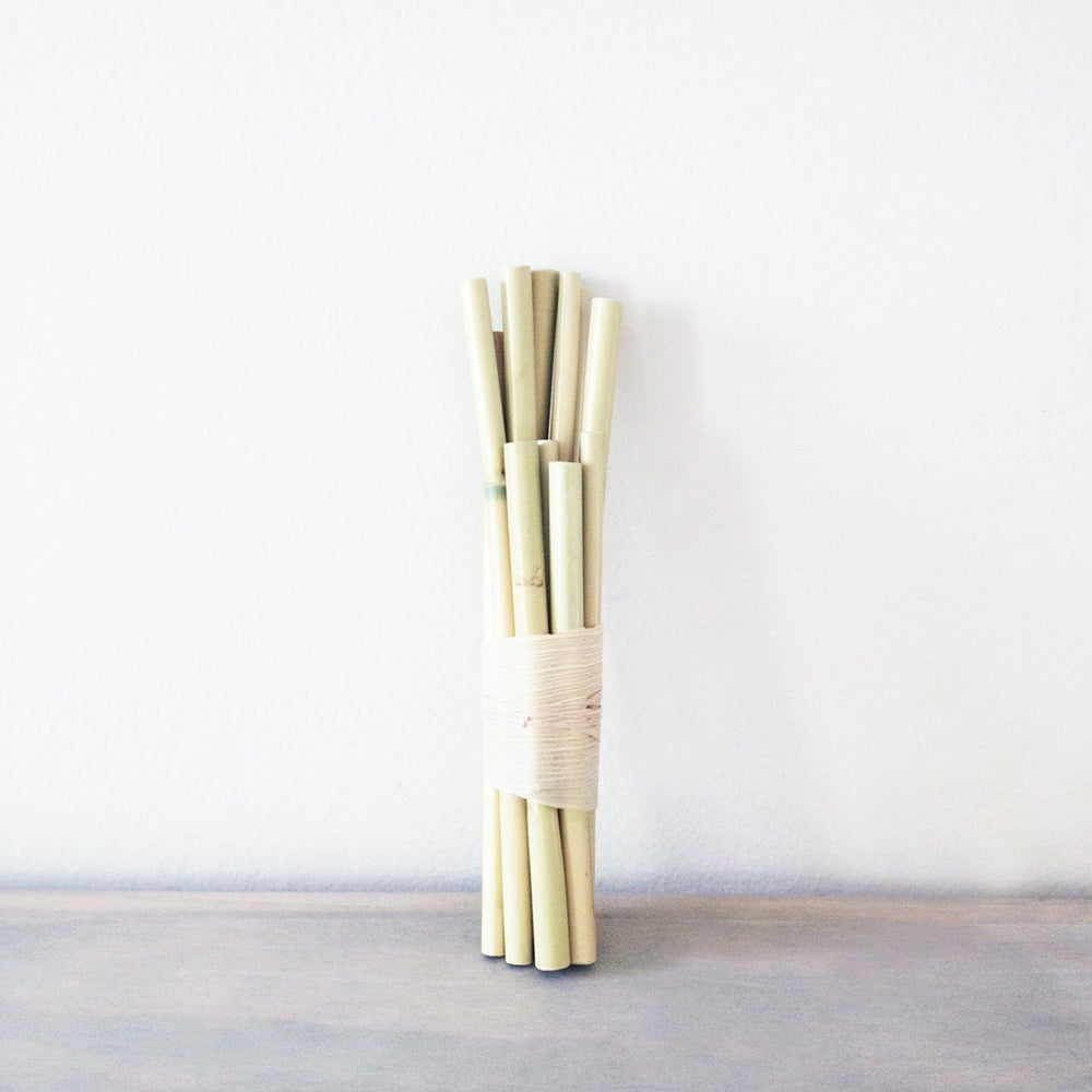 Image of Handmade Carrizo Drinking Straws