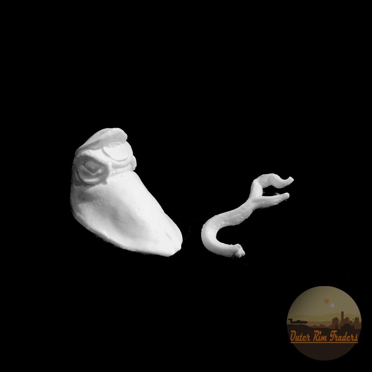 Image of Tongued Slug