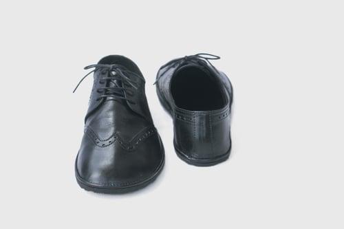 Image of Wingtip Brogues in Lustrous Black