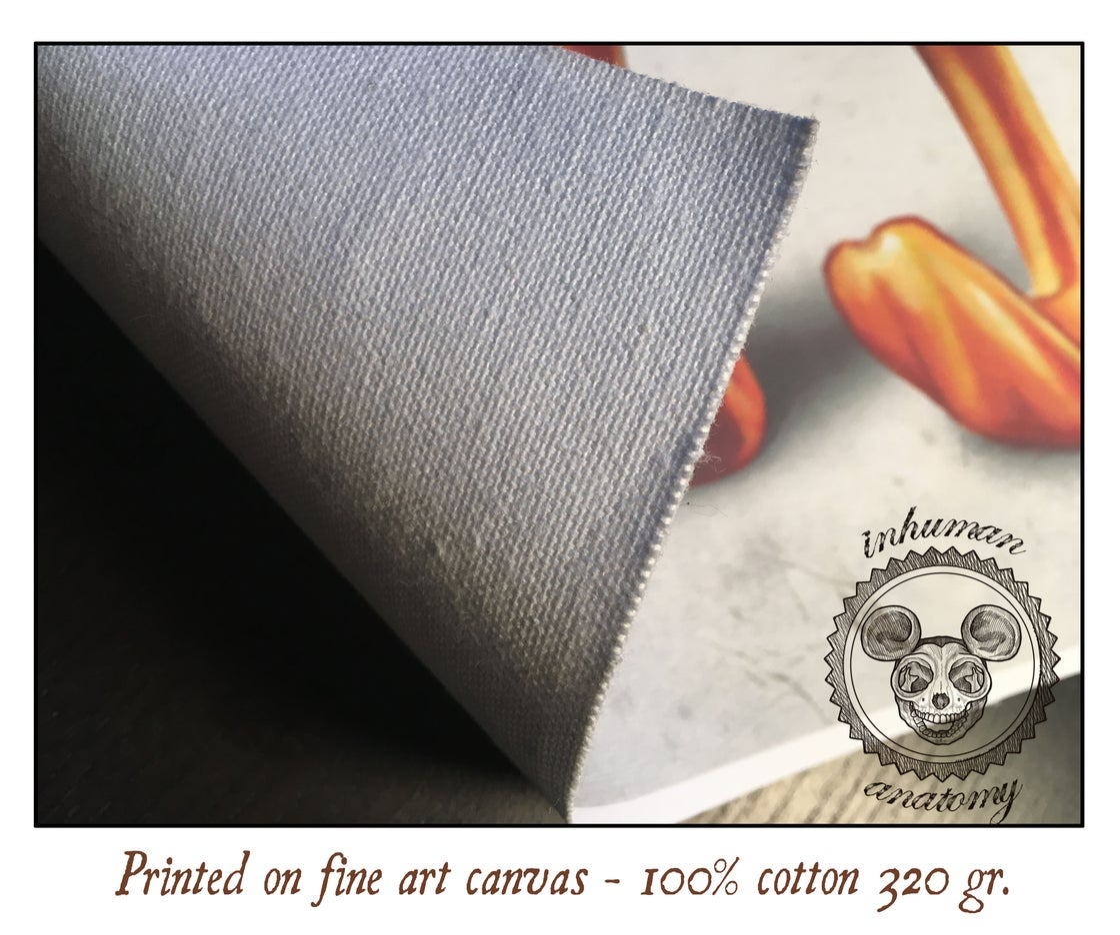 Image of SPONGEBOB- ANATOMY  limited edition of 100 Giclèe print on fine art canvas