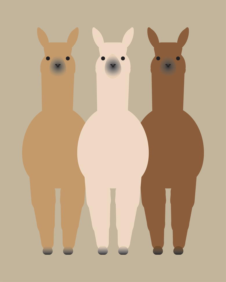 Image of Alpaca and Llama Collection