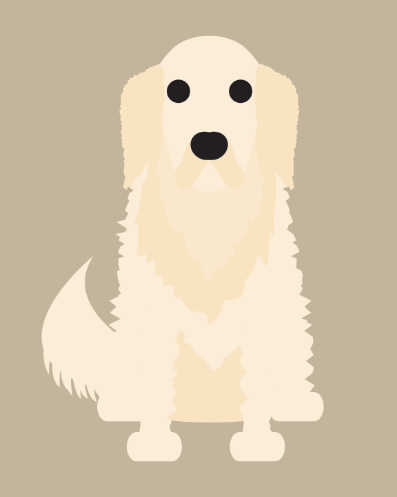 Image of Golden Retriever Collection