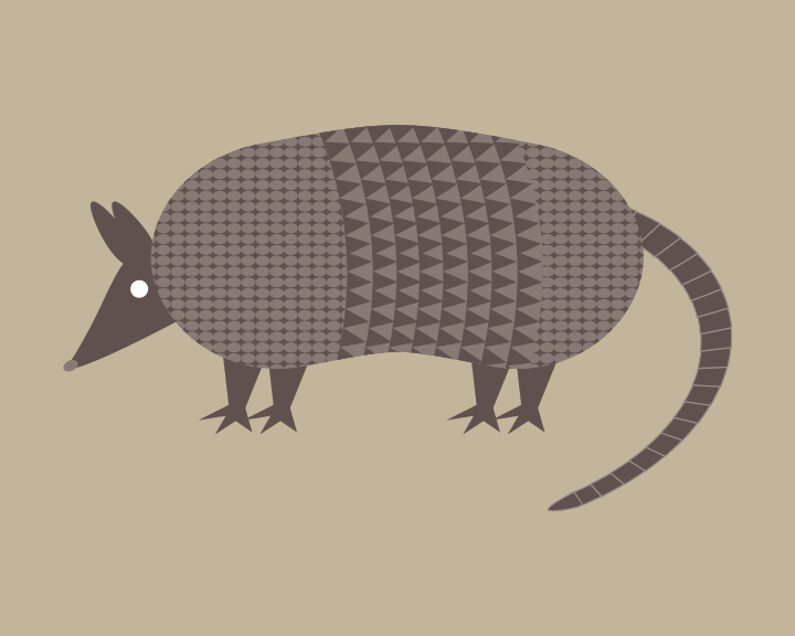 Image of Armadillo, Brown Bear, Opossum Collection