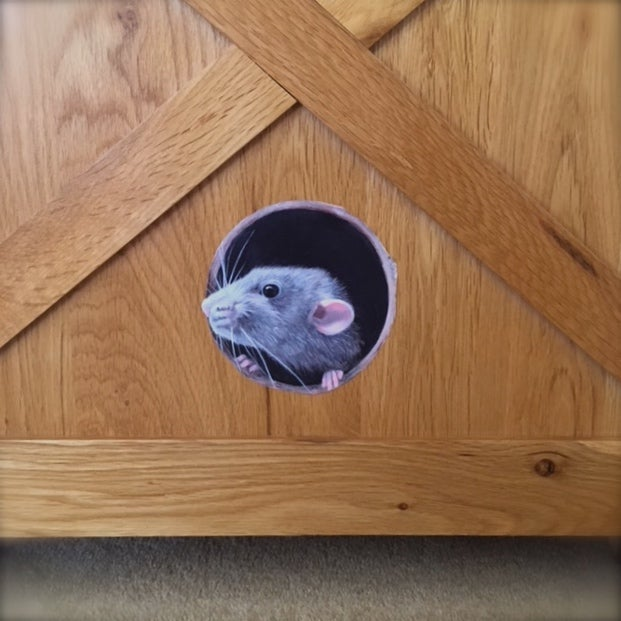 Image of Ruffalo Rat ~ Wall sticker decal