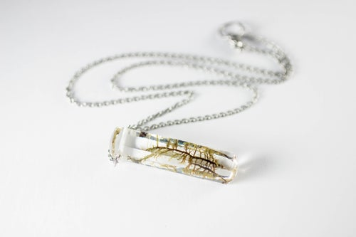 Image of Moss Specimen Necklace - Rectangular Prism