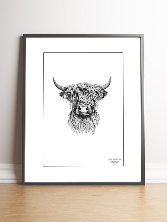 Image of Highland Cow Limited Edition Print