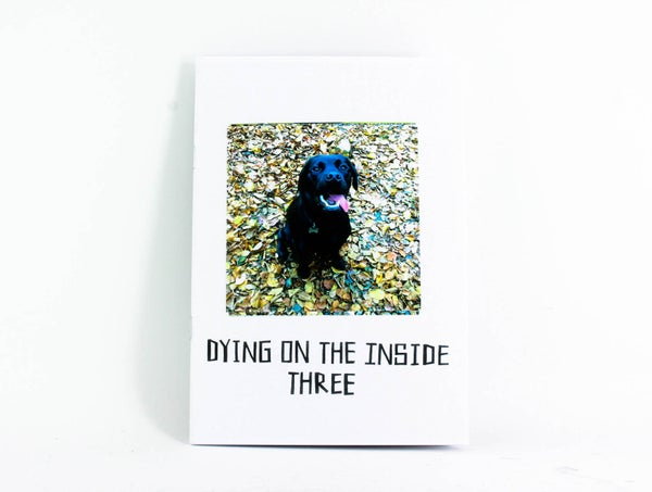 Image of Dying On The Inside fanzine. Issue Three