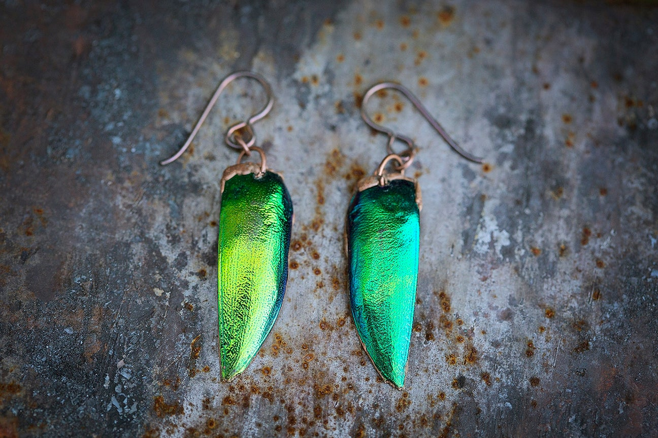 Image of Reliquary Earrings | Electroformed Thai Jewel Beetle Wings + copper