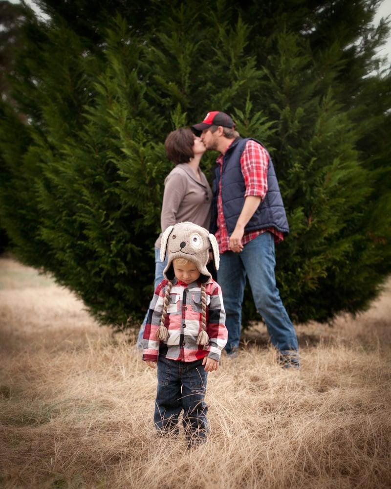 Image of Quick Takes @ Christmas Tree Farm
