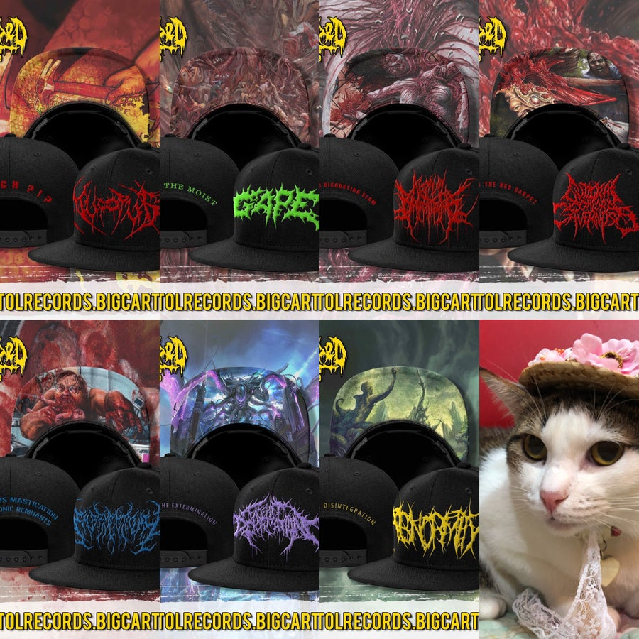 Image of *SNAPBACK PREORDER* ABNORMITY/MUCOPUS/AGONAL BREATHING/FACELIFT DEFORMATION/GAPE/EMBRYECTOMY/GCC !