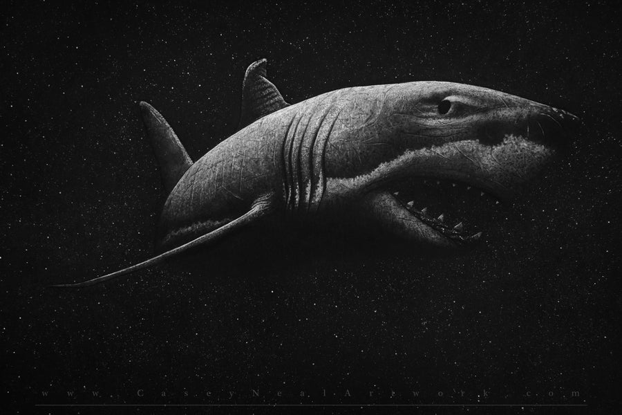 Image of Shark In Space