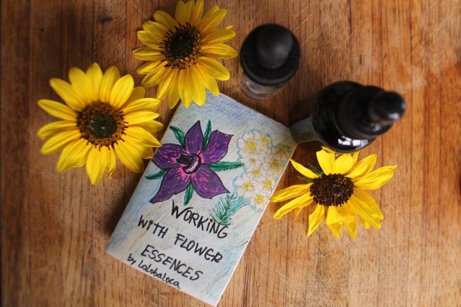 Image of WORKING WITH FLOWER ESSENCES MINI ZINE