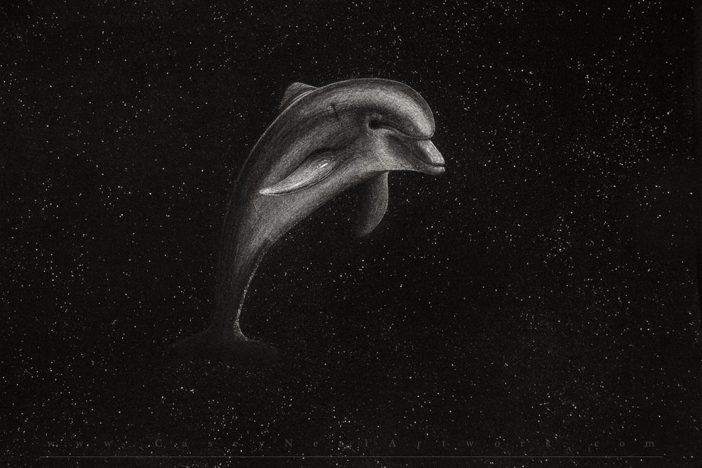 Image of Dolphin In Space