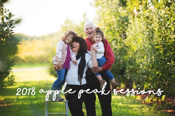Image of 2018 Apple Peak Sessions at Quarry Hill Orchard October 20th