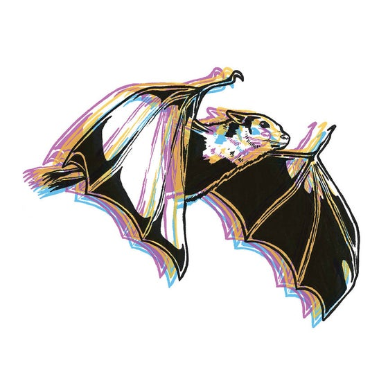 Image of CMYK Bat