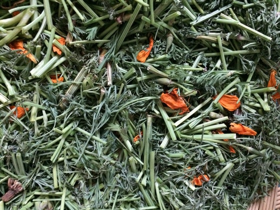 Image of Dry Herbs ~ 1 oz.