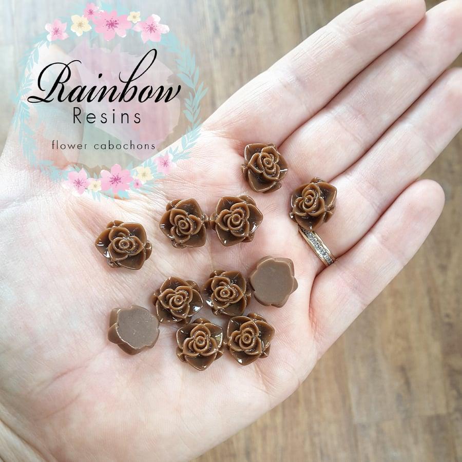 Image of Dark brown wild roses x 10