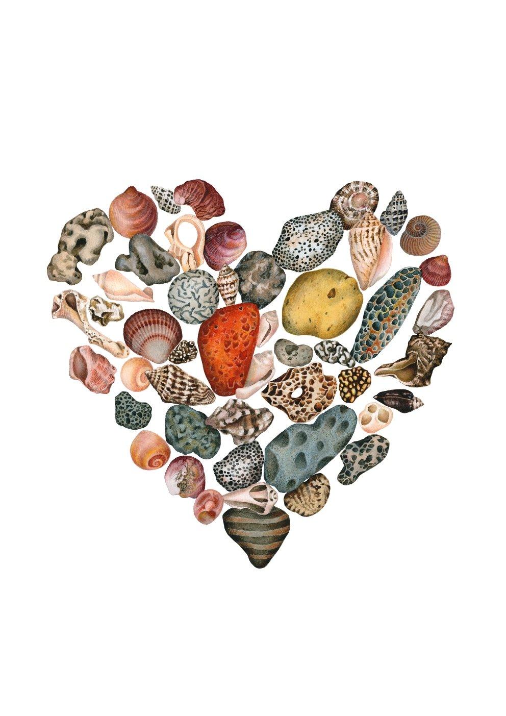 """Caesarea"". Fine art print of a heart shaped seashell composition in watercolor."