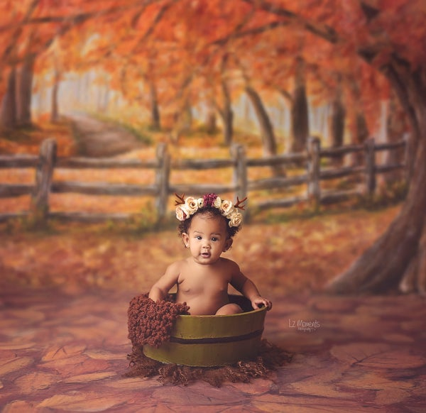 Image of Fall Mini Sessions