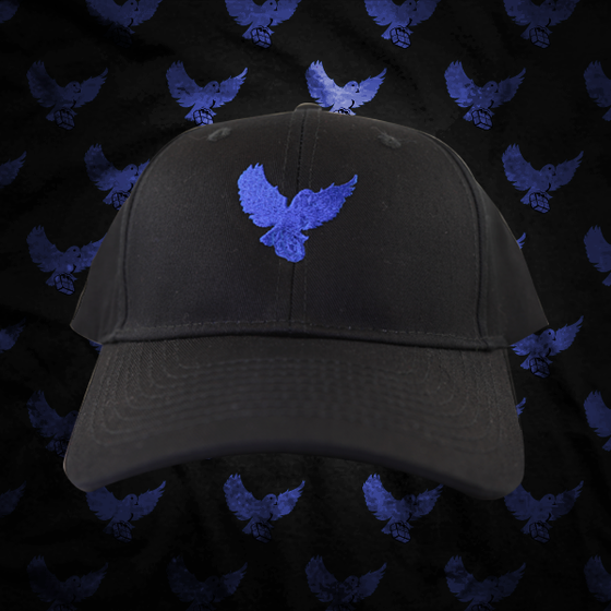 Image of Black/Blue Birdies Dad Hat