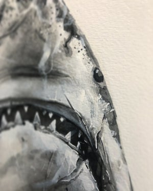 "Image of ""Jaws"""