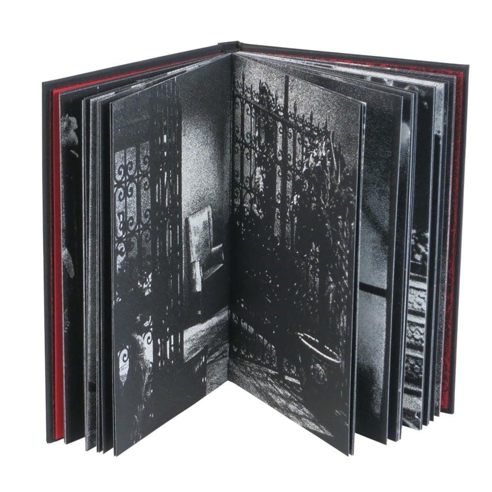 Image of Noir Interiors (Hard back)