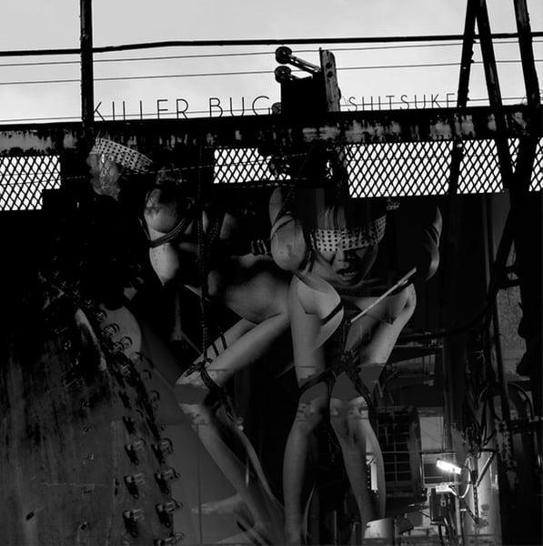"""Image of Killer Bug """"Shitsuke"""" LP"""