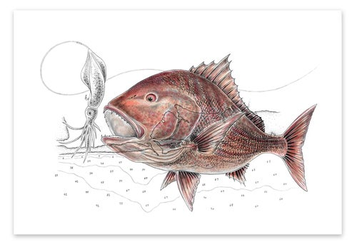 Image of Red Snapper and Destin Harbor, Florida