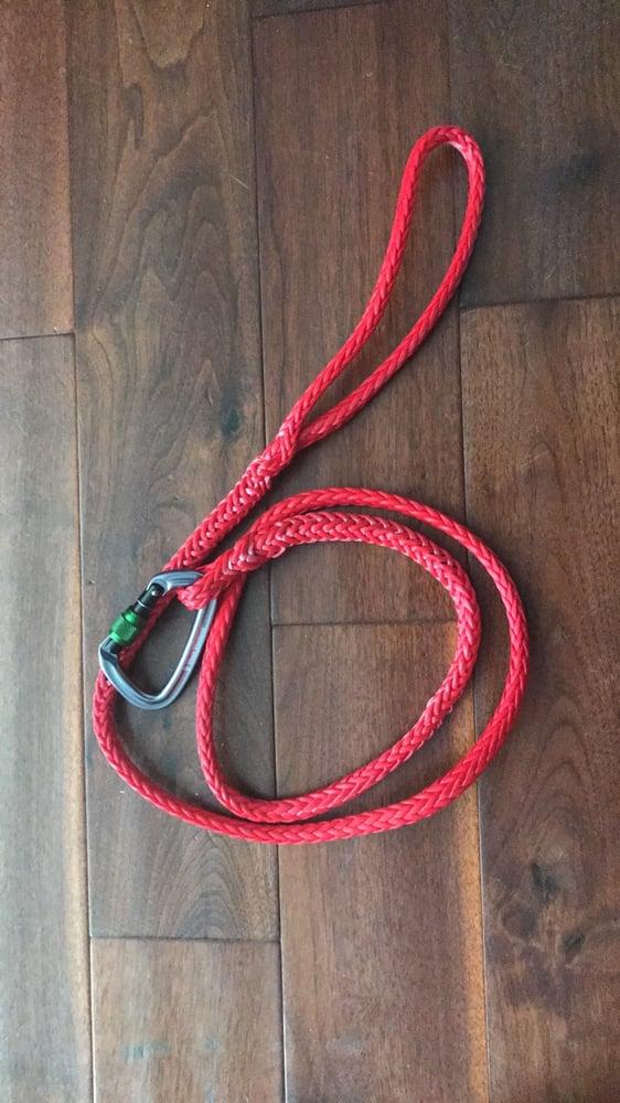 Image of TOO dog leash