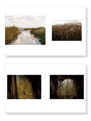 Amanda Harman - A Fluid landscape