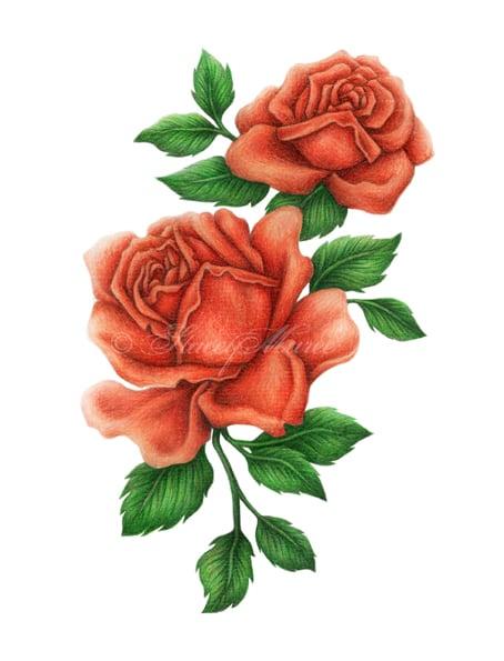 Image of Red Roses - Art Print