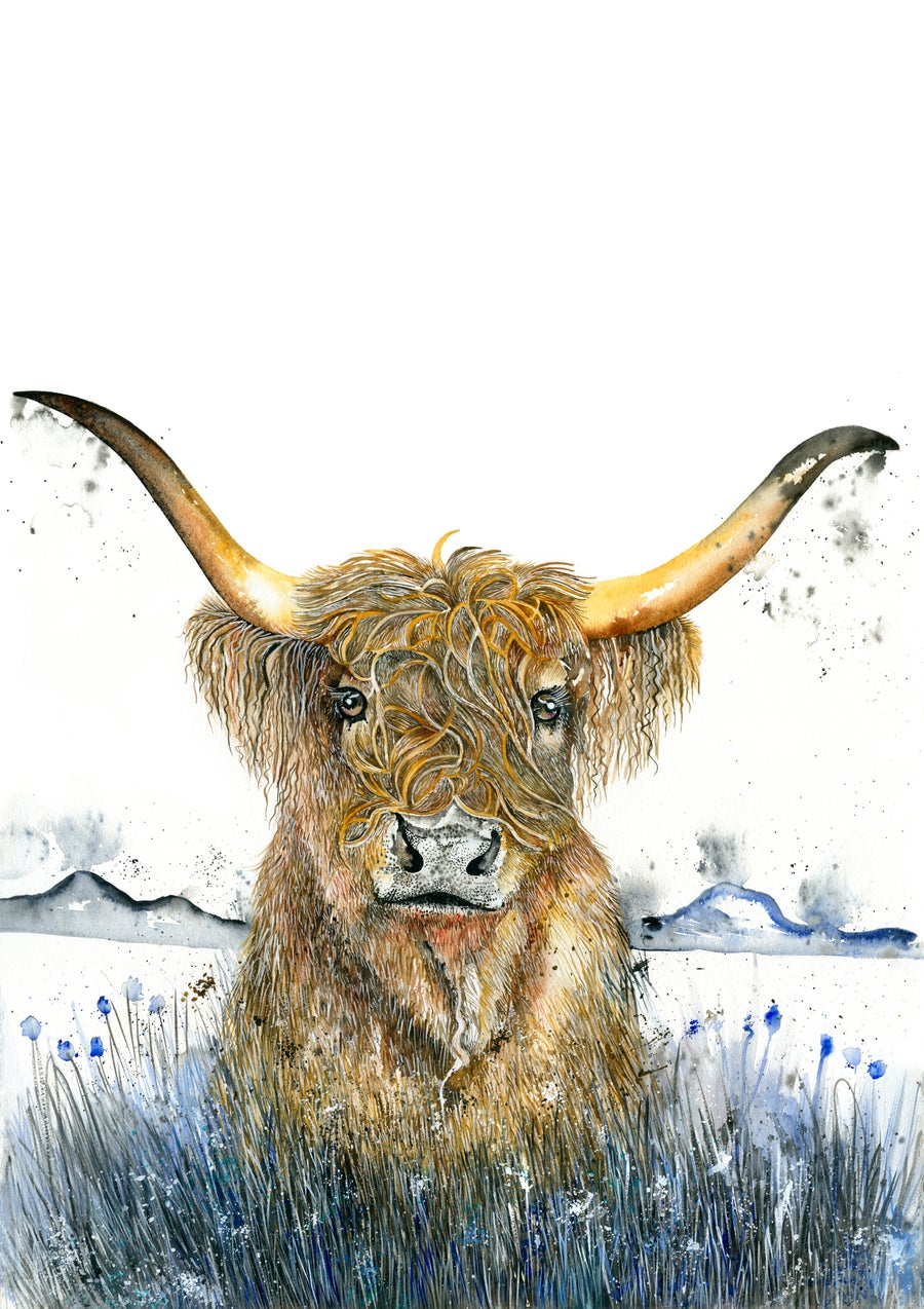 "Image of ""Harry"" the Highland cow with FREE SHIPPING"