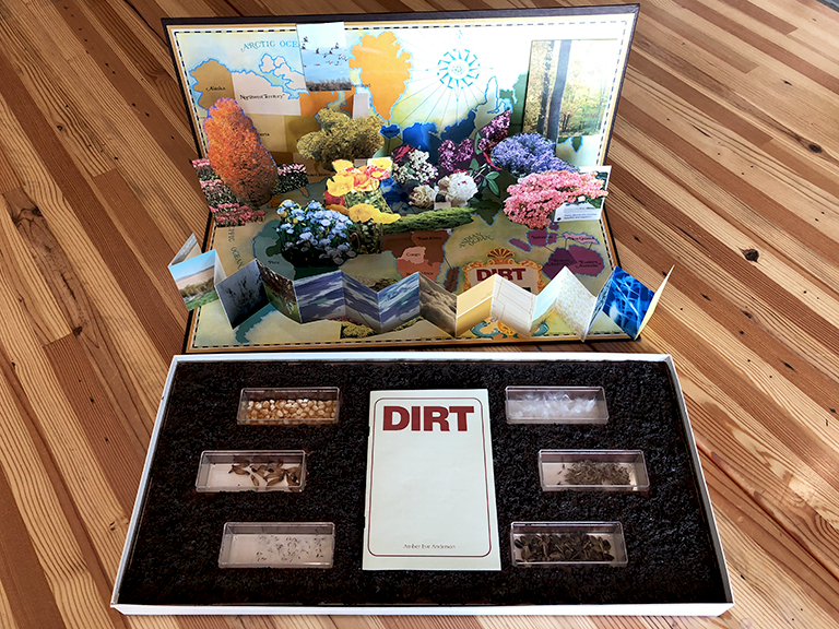 Image of DIRT / Amber Eve Anderson
