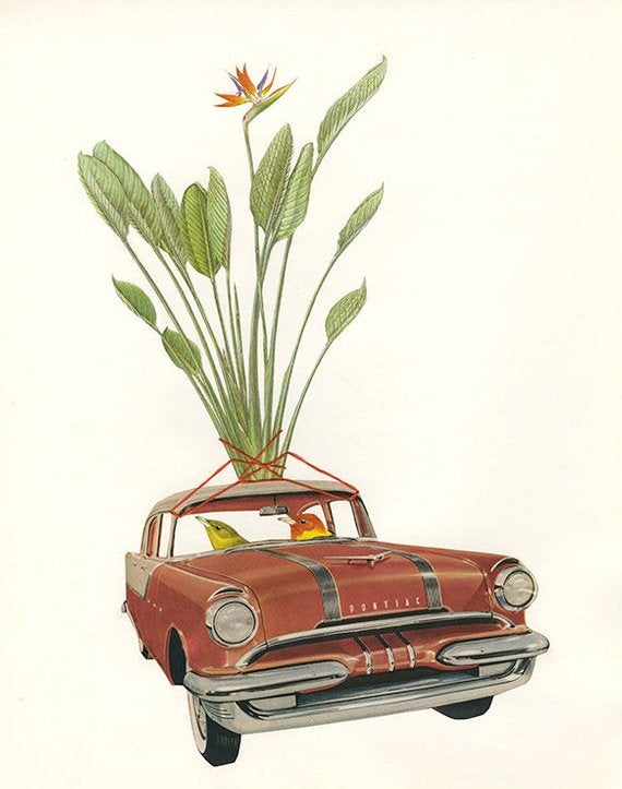 Image of Paradise bound. Original collage by Vivienne Strauss.