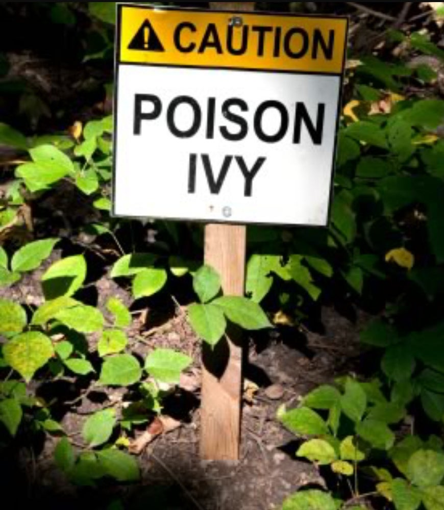 Image of Ultimate Natural relief of Poison Ivy/Sumac/Oak Kit