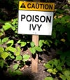Ultimate Natural relief of Poison Ivy/Sumac/Oak Kit