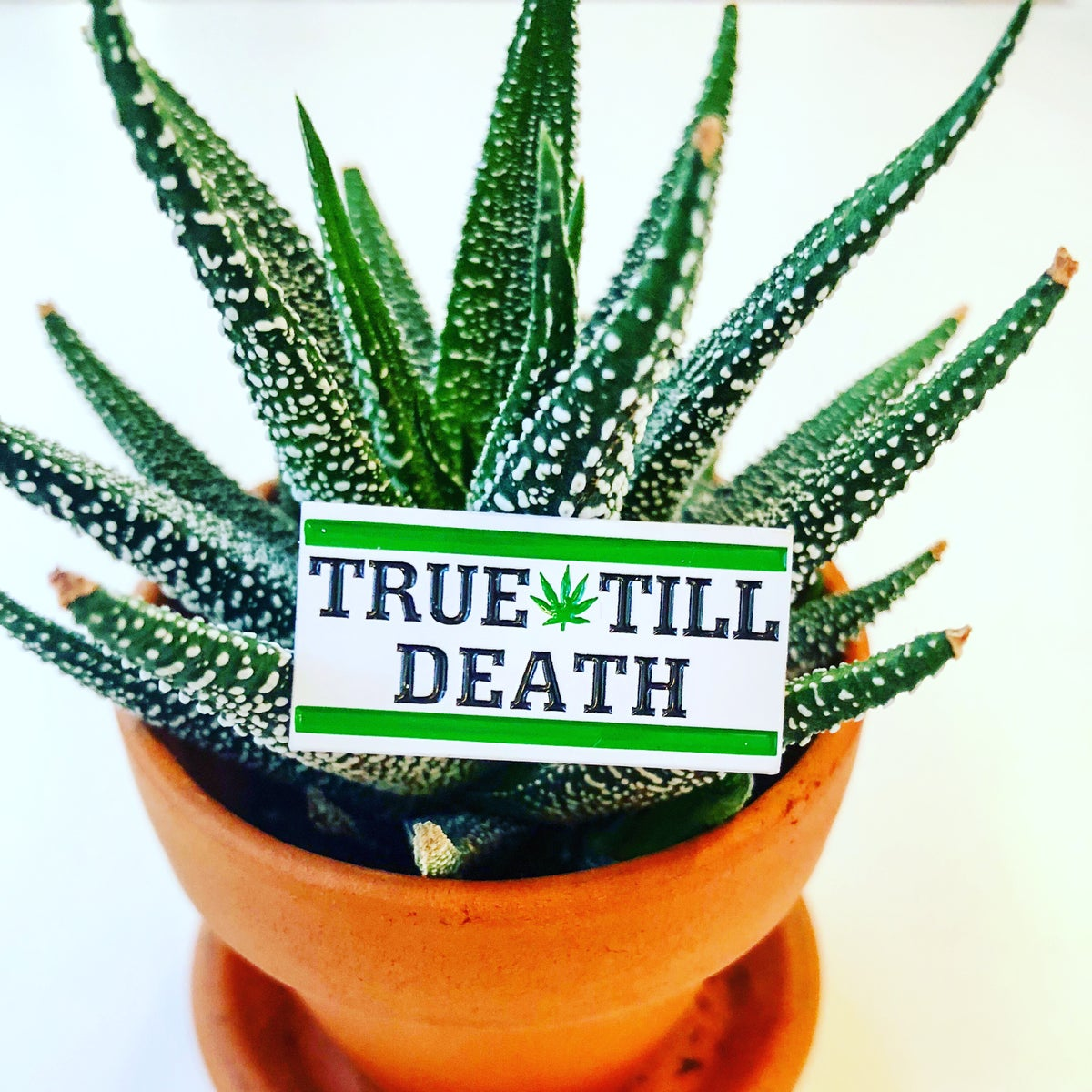 Image of True Till Death Pin