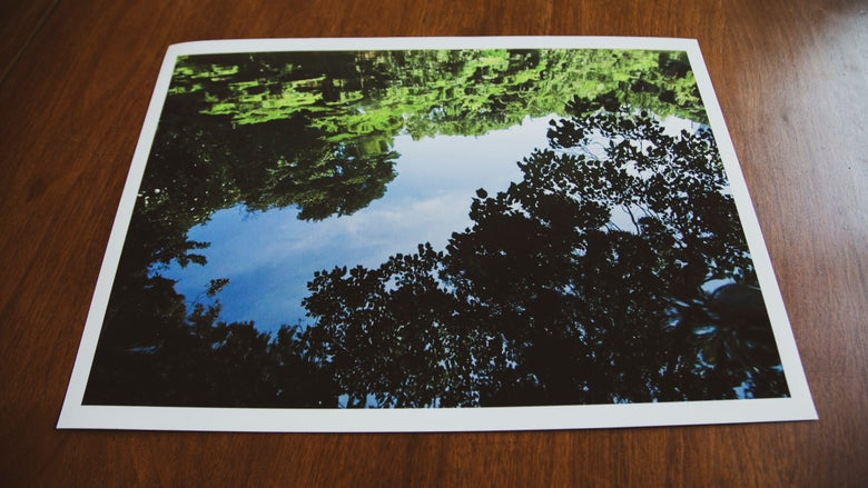 "Image of ""SANSHIRO POND"" 12X17 Print (Signed single edition)"