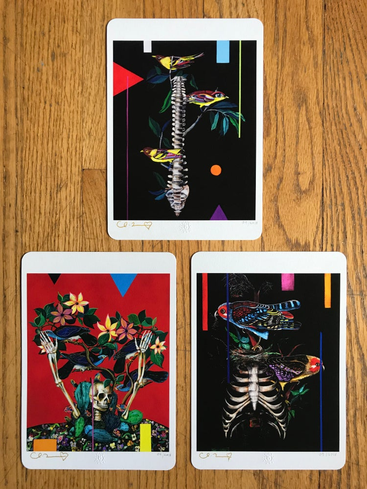 "Image of ""Birds and Bones"" Three Giclee Fine Art Print Set"
