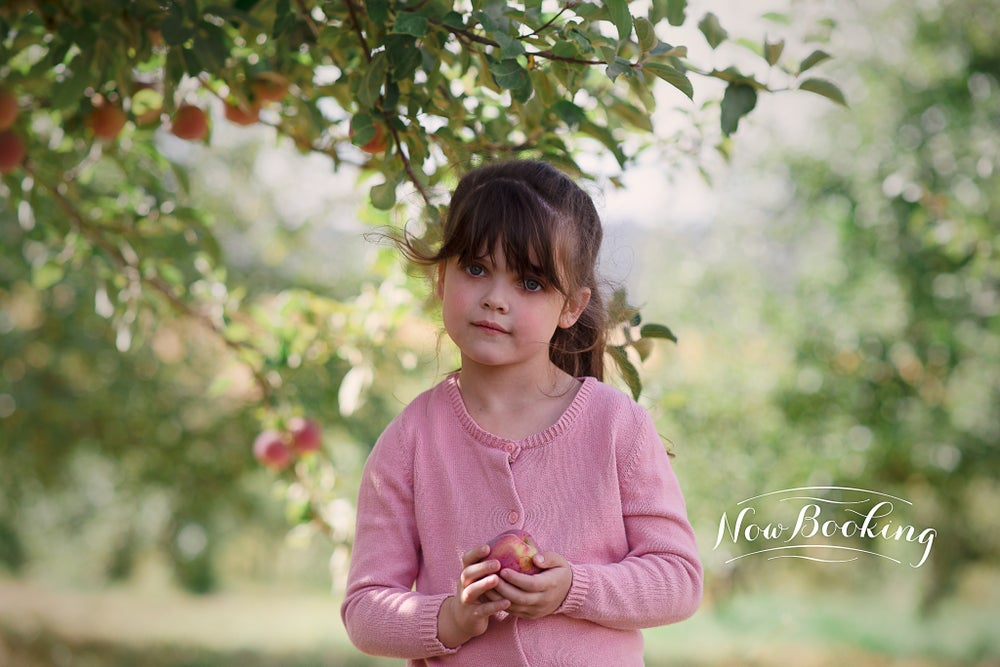 Image of Apple Orchard Sessions