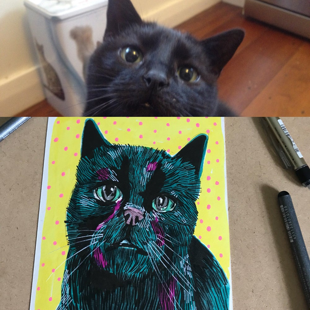 Your Awesome Pet Face Drawing