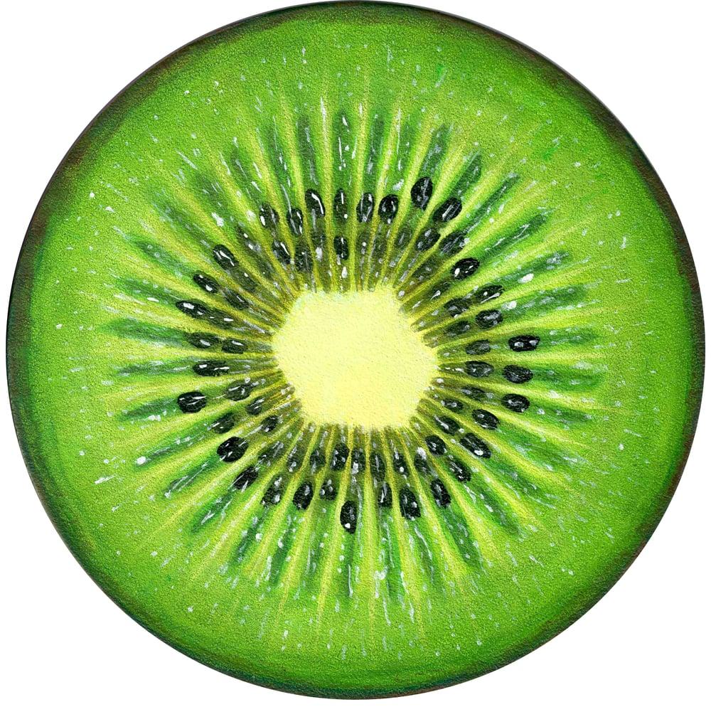 Image of Kiwi Open Edition Print