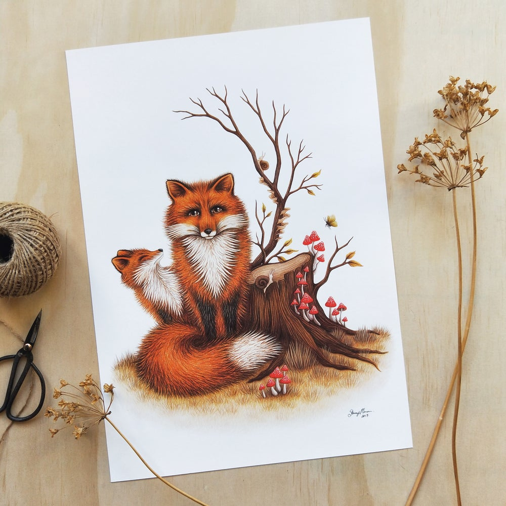 Image of Fox & Fungi - FINE ART GICLÉE PRINT