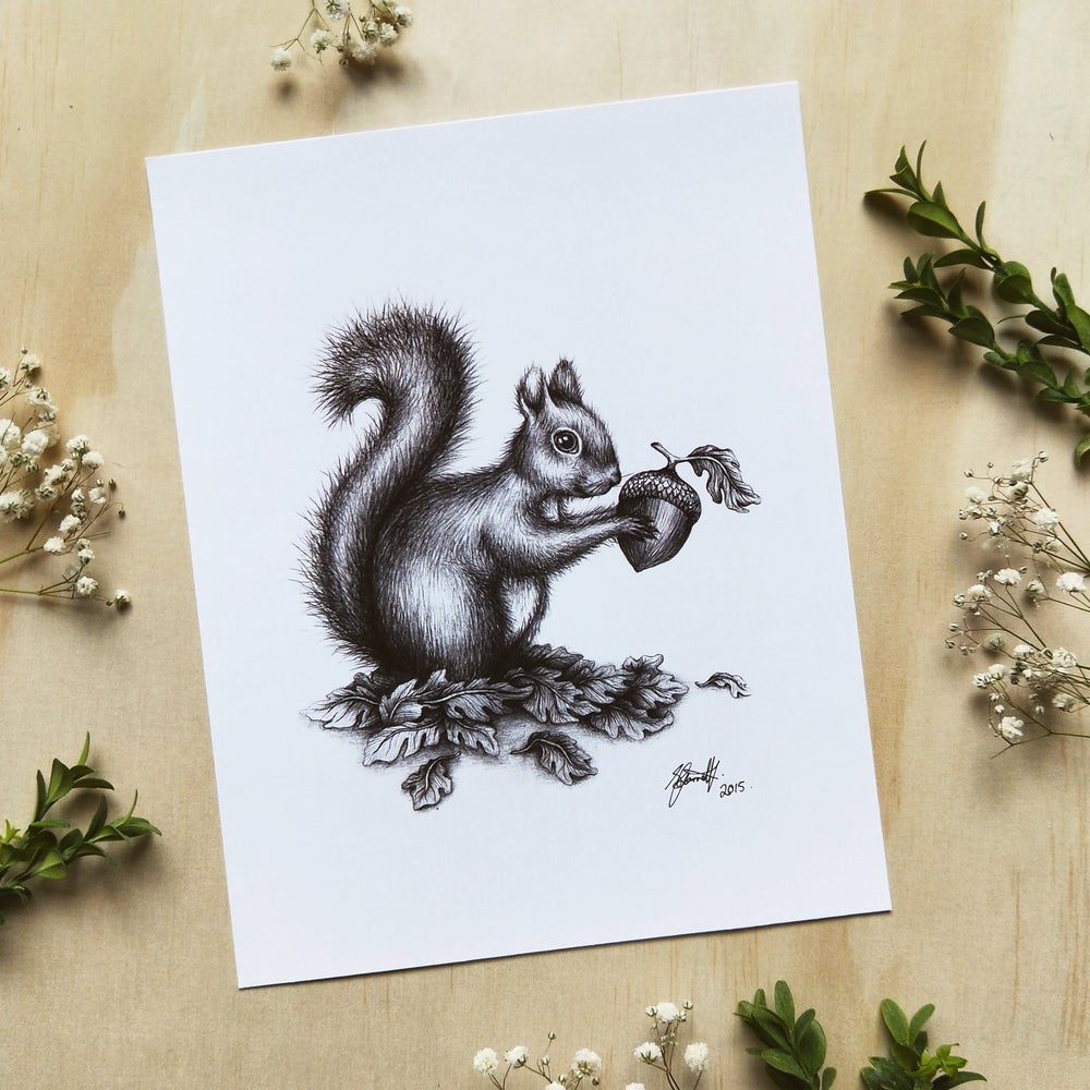 Image of Squirrel - Art Print