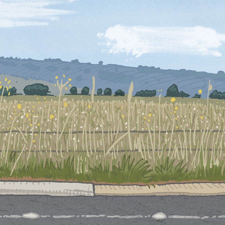 Image of Symonston, Narrabundah Lane, digital print