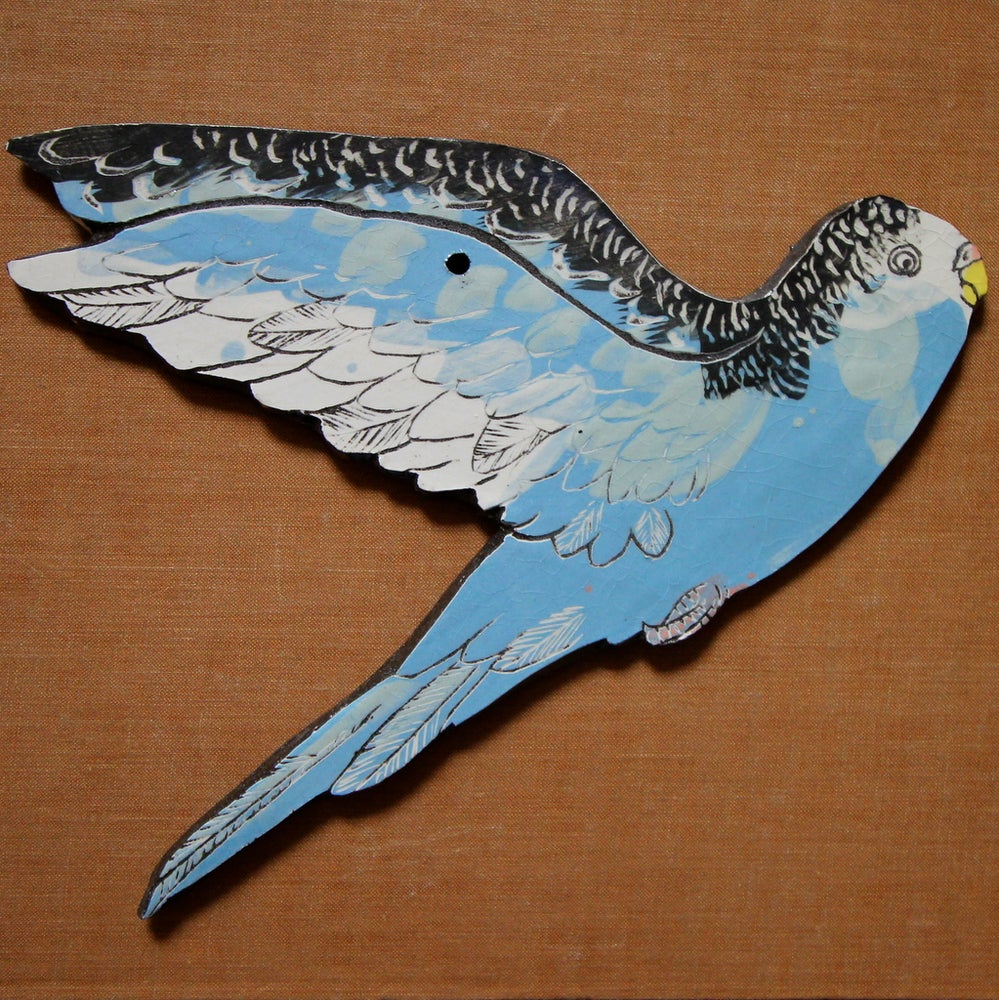 Image of Flying Budgies