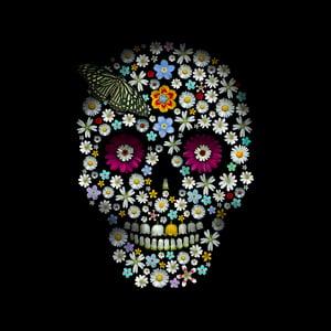 Image of Flower Skulls - Chromaluxe