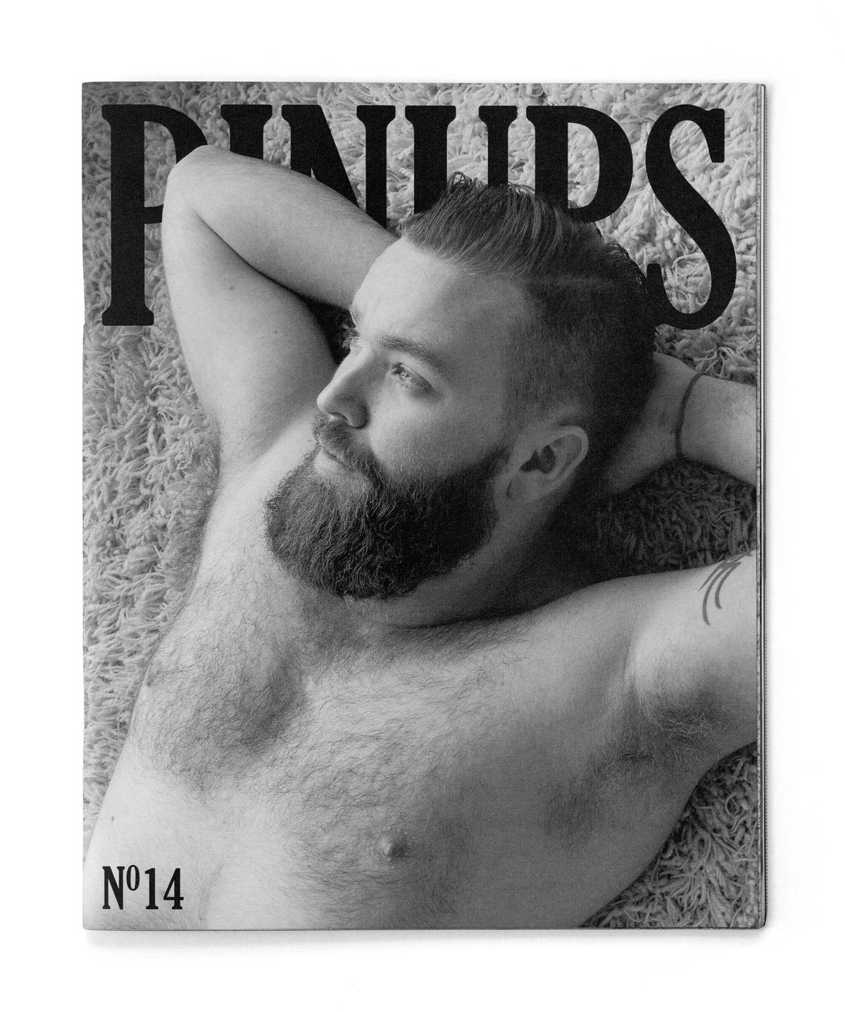 Image of Pinups Nº14