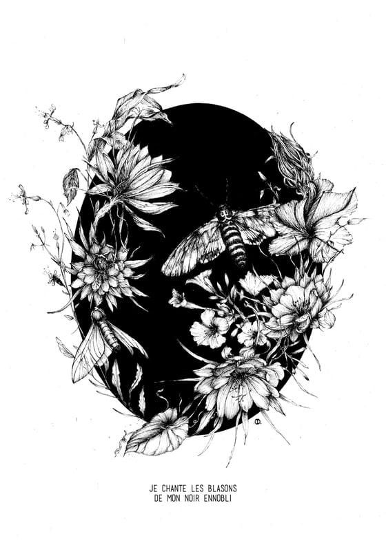Image of Obscures // S I B Y L L E ◈ Tirage d'art